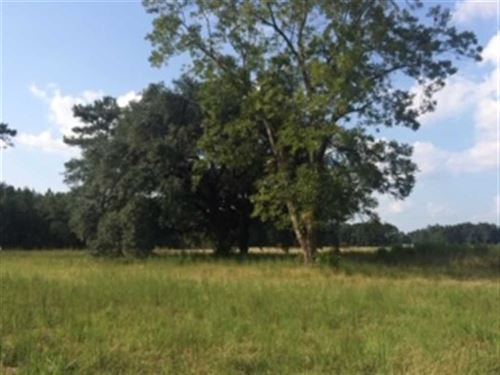 10.2 Acres With Hunting And House : Turbeville : Clarendon County : South Carolina