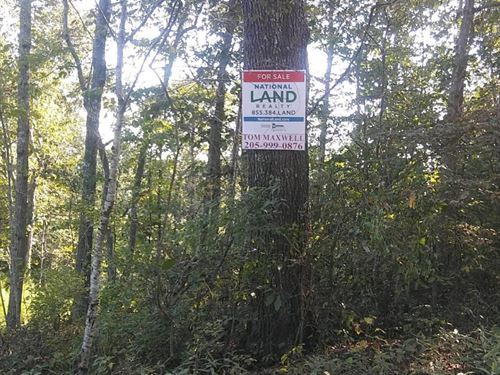 Sipsey Fork/Smith Lake Lots 3A-5A : Double Springs : Winston County : Alabama