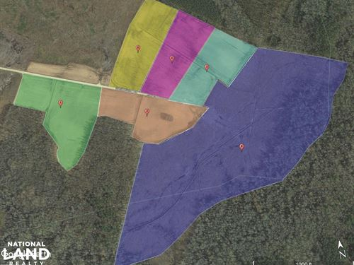 Haddock Farm Tract : Grimesland : Pitt County : North Carolina