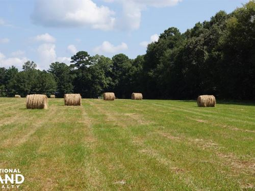 Improved Pasture With Homesite Near : Forkville : Scott County : Mississippi
