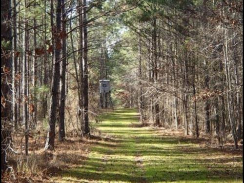 149 Acres In Noxubee County In Maco : Macon : Noxubee County : Mississippi