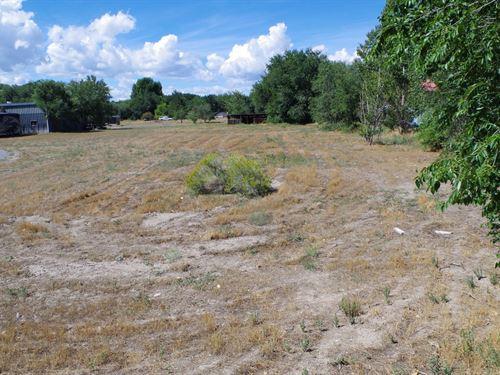 Montrose CO Building Lot Irrigated : Montrose : Colorado