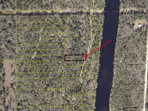 Wooded Lot Approximately 1.30 Acres : Mayo : Lafayette County : Florida