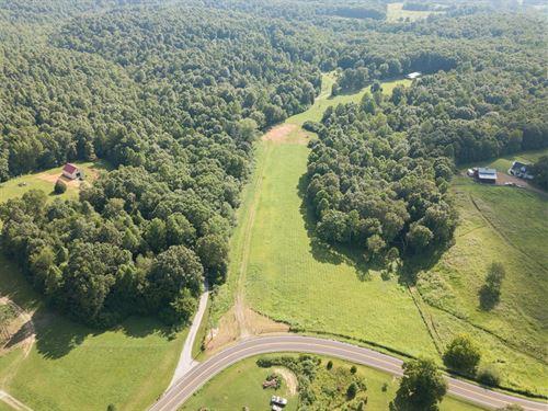 Mini Farm For Sale : Primm Springs : Williamson County : Tennessee