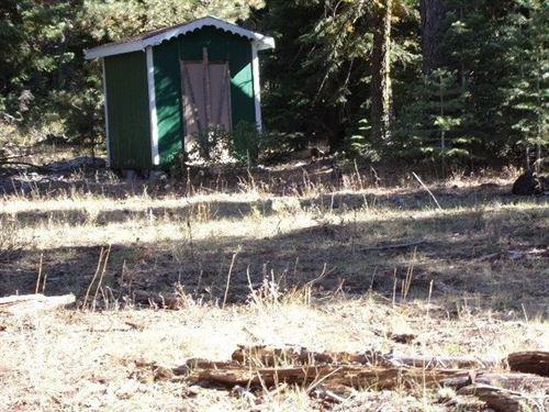 1+Acres Build-Able Mountainous Land : Alturas : Modoc County : California