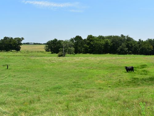 20.05 Acres East Of Austin : Coupland : Williamson County : Texas