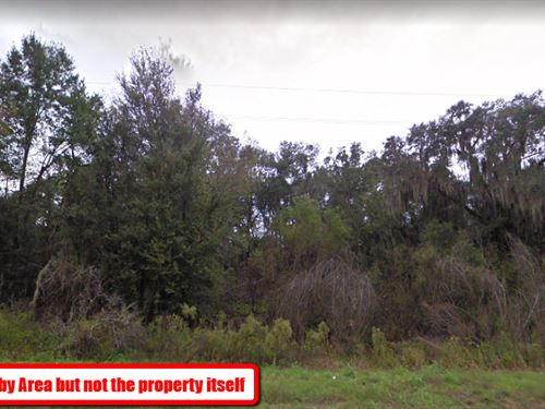 Beautiful Wooded 1.1 Acre Lot : Jennings : Hamilton County : Florida