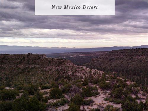 10890 Sq Ft In Valencia County : Los Lunas : Valencia County : New Mexico