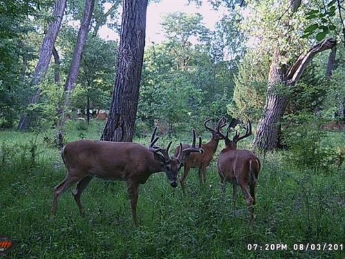 South Loup Sanctuary : Boelus : Howard County : Nebraska