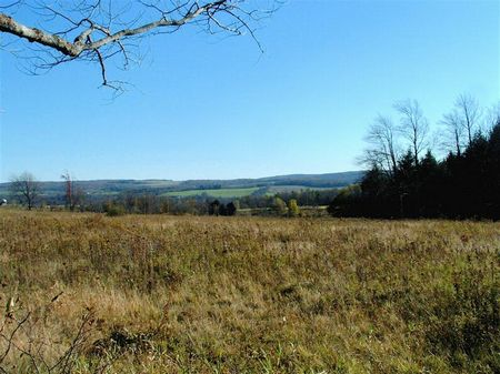 20.2 Country Acres & Mineral Rights : Lisle : Broome County : New York