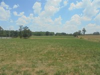 Beautiful Piece Farm Land in Ozarks : West Plains : Howell County : Missouri