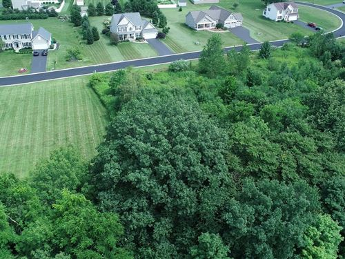 Hundreds Of Feet On Beaver Creek : Farmington : Ontario County : New York