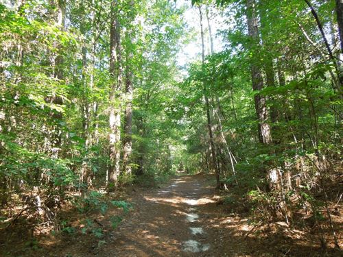 Ransdell, Goldston Tract : Fuquay Varina : Harnett County : North Carolina