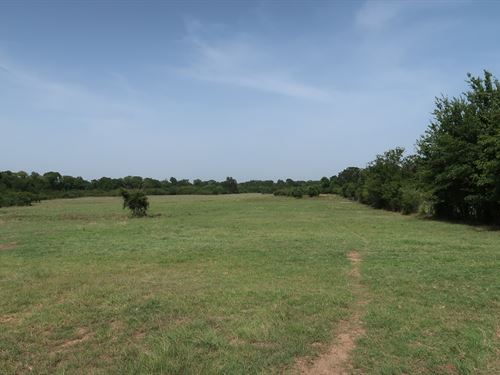 164 Acres In Normangee : Normangee : Leon County : Texas