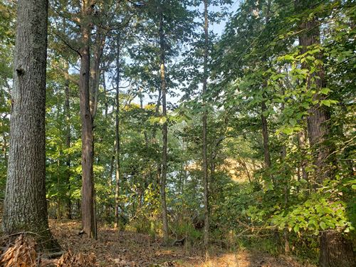 Cherokee Lake Front Building Lot : Mooresburg : Hawkins County : Tennessee