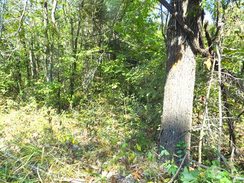 Land For Sale In Mammoth Spring : Mammoth Spring : Fulton County : Arkansas