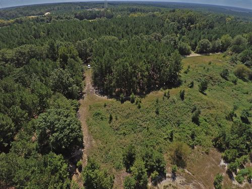 39 South Carolina Acres : Wallace : Marlboro County : South Carolina