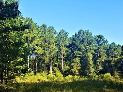 Little River Bend : Crawfordville : Taliaferro County : Georgia