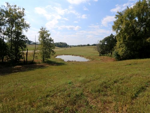Farmhouse & 124 Acres in 8 Tracts : Sparta : White County : Tennessee