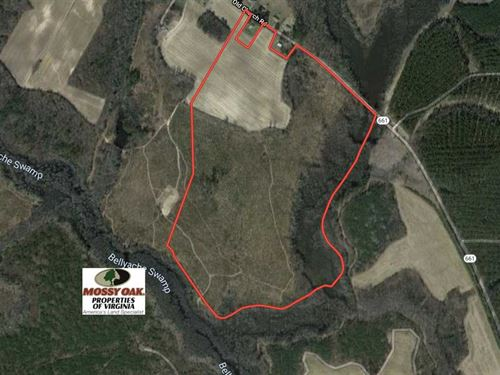 Under Contract, 70 Acres of Hunti : Drewryville : Southampton County : Virginia