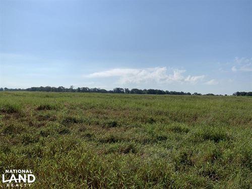 Irrigated Farmland With Prime Hunti : Winnsboro : Franklin Parish : Louisiana
