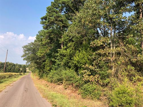 East TX Homesite, Timberland : Queen City : Cass County : Texas