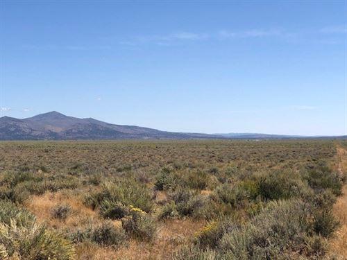 20 Acres in Termo, Lassen County : Termo : Lassen County : California