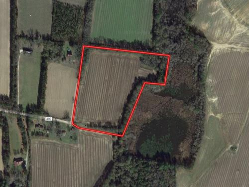 12.95 Acres in Statesboro, GA : Statesboro : Bulloch County : Georgia