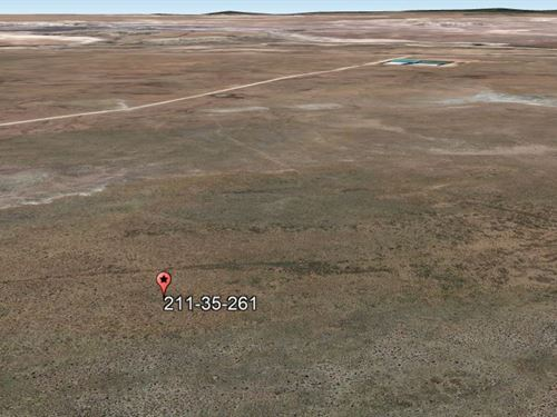 1 Acre Lot Near National Park : Sanders Unified : Apache County : Arizona