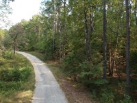 5.45 Acres, Richland County, Sc : Blythewood : Richland County : South Carolina