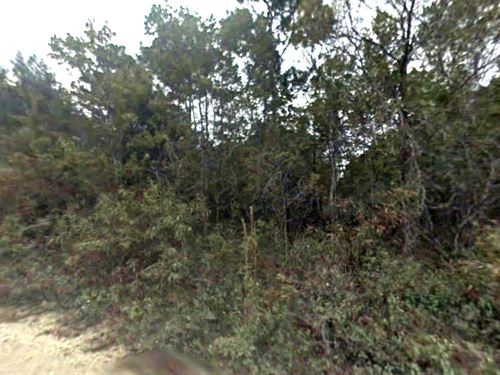 Flagler Estates Investment Or Camp : Bunnell : Flagler County : Florida