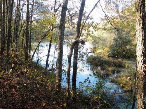 Beaver Dam Pond : Keysville : Burke County : Georgia