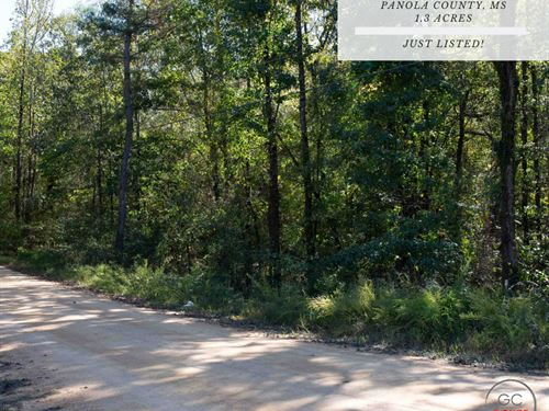 1.30 Acres In Panola County, MS : Pope : Panola County : Mississippi
