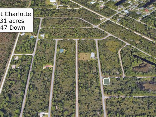 Majestic .31 Acre Corner Lot : Port Charlotte : Charlotte County : Florida