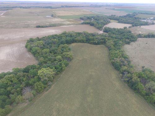 Bissell Creek 160 : Phillipsburg : Phillips County : Kansas