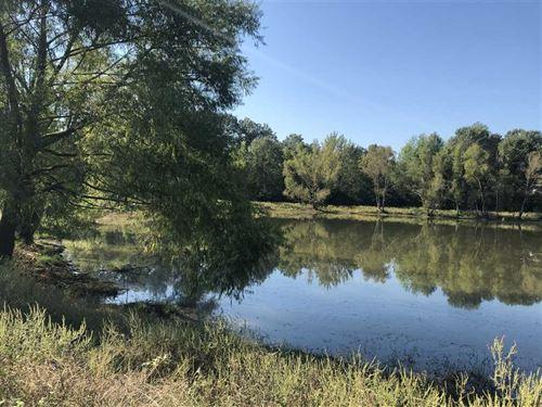 1,000 Feet of Ouachita River Front : Malvern : Hot Spring County : Arkansas