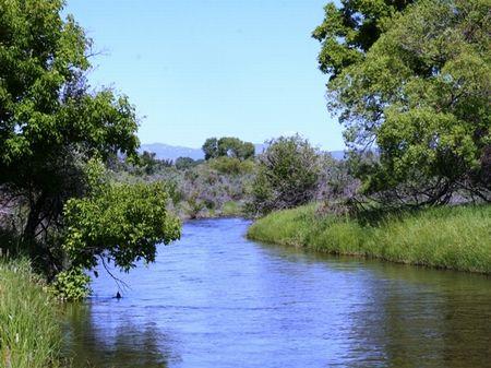 Rock Creek Meadows : Buffalo : Johnson County : Wyoming