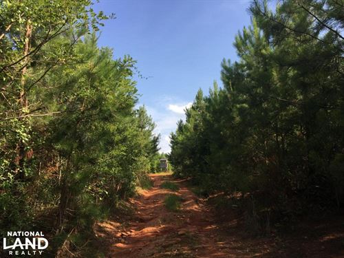Starr Recreational & Timber Propert : Starr : Anderson County : South Carolina