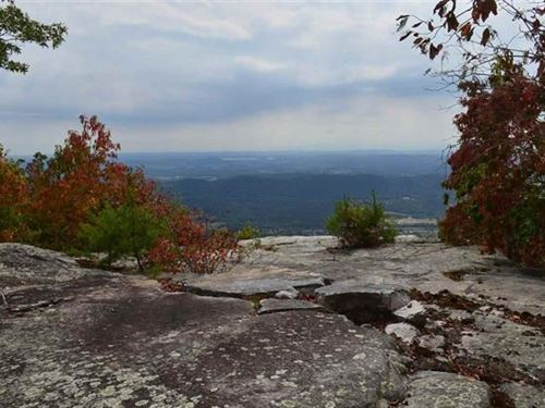 340 Acres Gorgeous Mountain : Rutledge : Grainger County : Tennessee