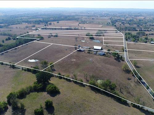 Absolute Farm Auction, 146 Acres : Danville : Boyle County : Kentucky