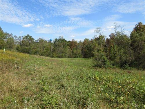 Washington County Ohio Hunting Land : Marietta : Washington County : Ohio