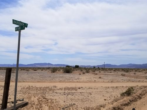 Nice, Power, Easy Access, $195/M : Wonder Valley : San Bernardino County : California