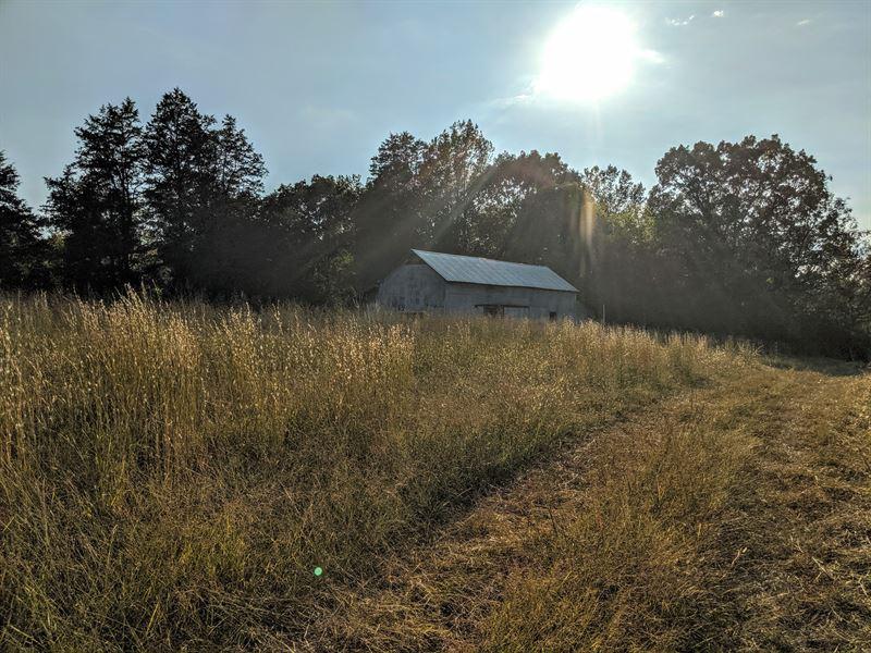 Beautiful Farm With Creek Frontage : Lafayette : Walker County : Georgia