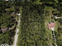 Naples Logan Woods Luxury Homesite : Naples : Collier County : Florida