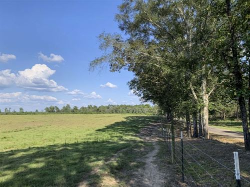 90 Acres In Perry County In Ovett : Ovett : Perry County : Mississippi