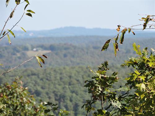 22 Wooded Acres Ozark Mountains : Kingston : Madison County : Arkansas