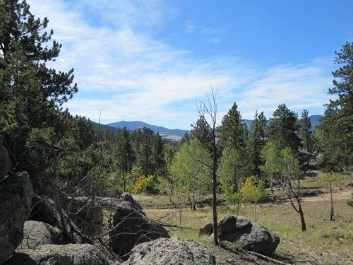 One Acre Lot Views Eleven Mile : Lake George : Park County : Colorado