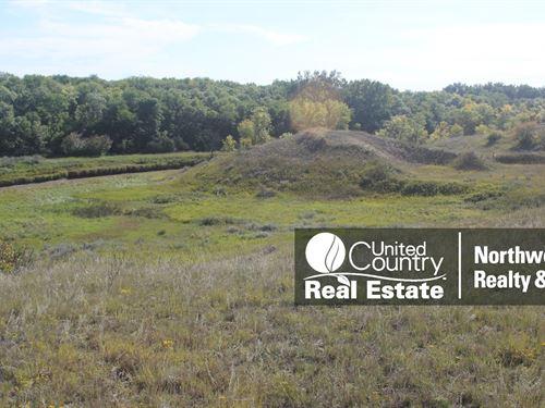 Montana Farm Ground, Hunting : Vandalia : Valley County : Montana