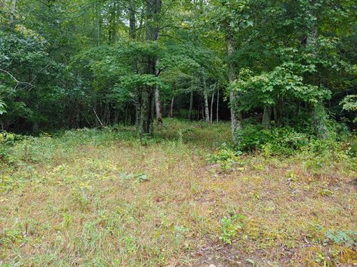 Building Lot For Sale in Fries, VA : Fries : Grayson County : Virginia