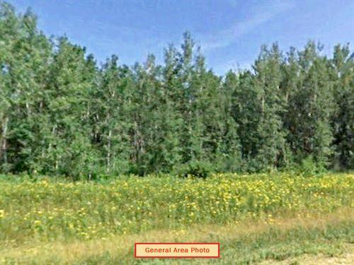 Secluded 1.06 Acre Lot Near Cushing : Randall : Morrison County : Minnesota